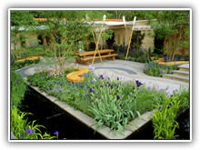 The Boat Race Garden - Whole garden