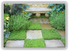 The Herbalists Garden - Herbs & paving in a chequer board pattern